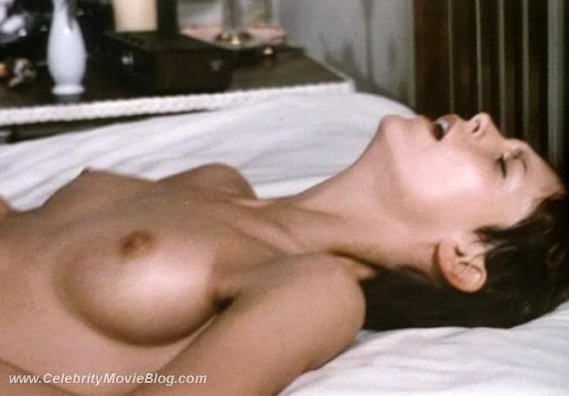 pregnant anal sex porn