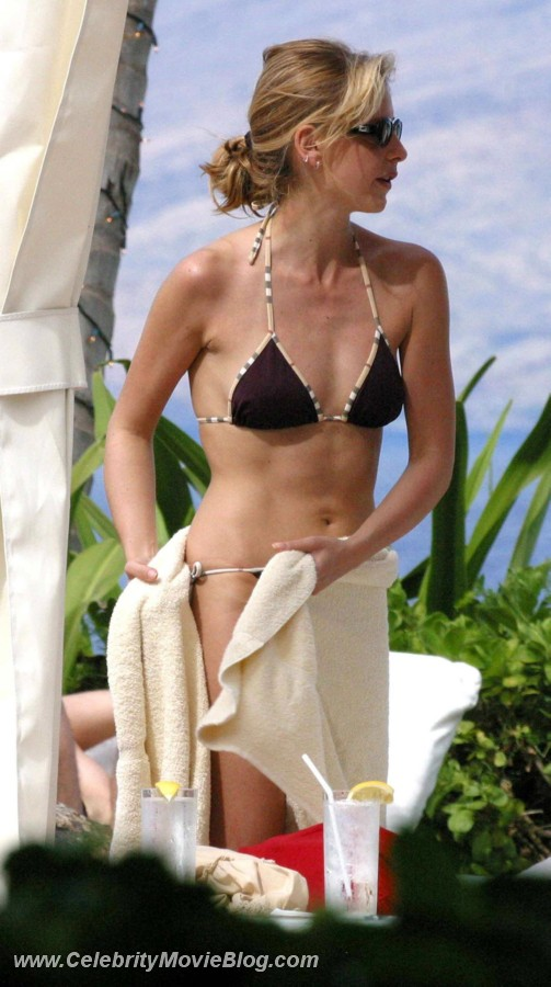 Sarah Michelle Gellar sex pictures @ Ultra-Celebs.com free celebrity naked ../images and photos